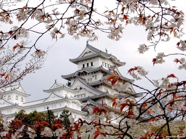 Япония заняла первое место в мире по количеству суицидов
