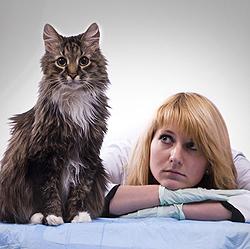 Ветеринары чаще страдают от депрессий, чем врачи