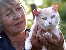 Животные могут помочь больному человеку больше, чем принято считать