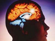 Особые рецепторы не дают развиваться паническим атакам