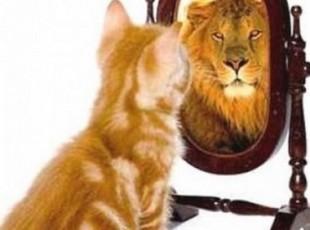 Что дает уверенность в себе и самооценка