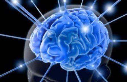 13 способов сохранить работоспособность мозга