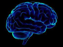 Как увеличить способности своего мозга?