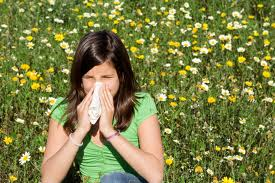 Аллергия: доверяйте лучшим