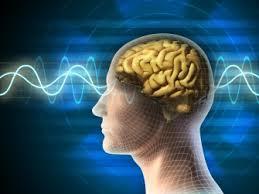 Завершено крупнейшее исследование генетики шизофрении
