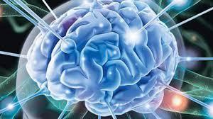 Исследователи ищут причину возникновения заболеваний психики