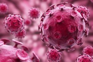 Тестостерон в большой концентрации приводит к развитию рака