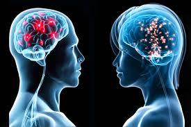 Ученые создали искусственные связи воспоминаний