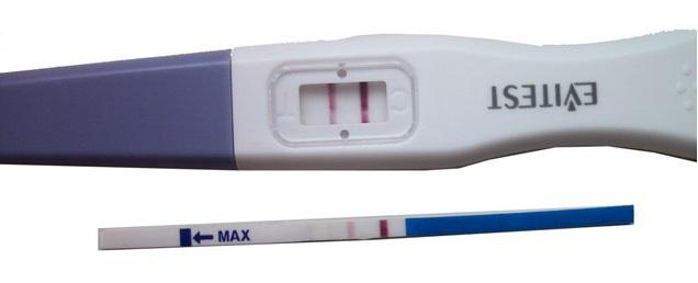 Тест на беременность. Ложноположительный тест