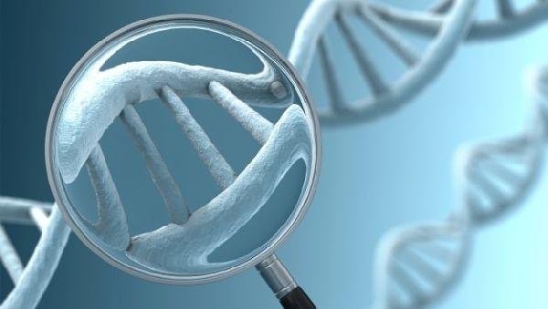 Обнаружена мутация, повышающая риск развития шизофрении в 35 раз