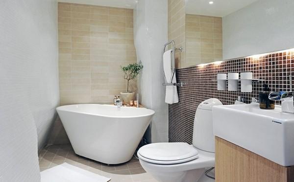 Ремонт и оборудование ванной комнаты