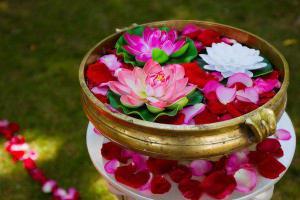 Цветы могут вылечить депрессию