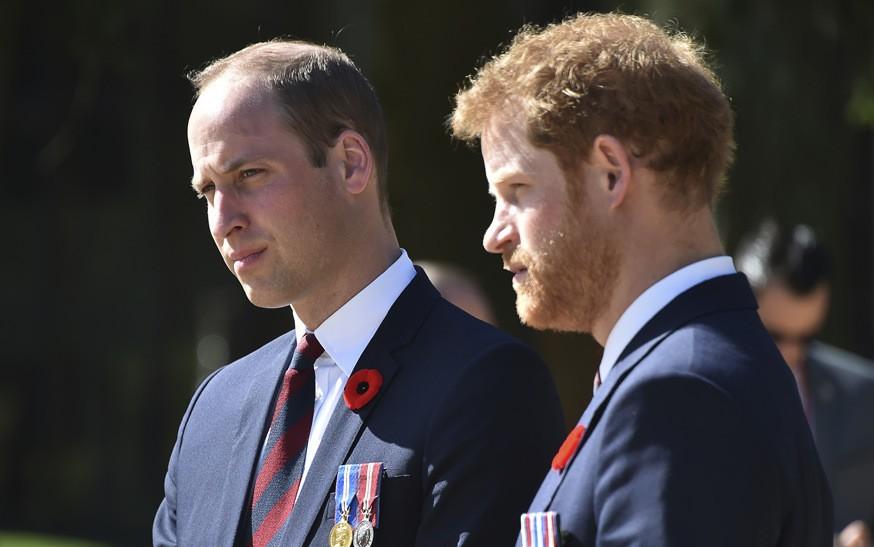 Принцы Уильям и Гарри призвали мужчин обращаться к психологам