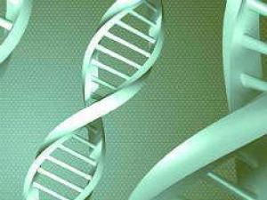 Антидепрессанты приводят к повреждениям ДНК в сперме