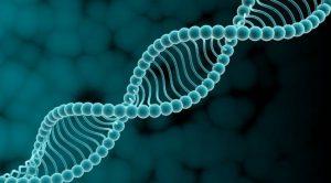 Медики нашли ген,который приводит к депрессии