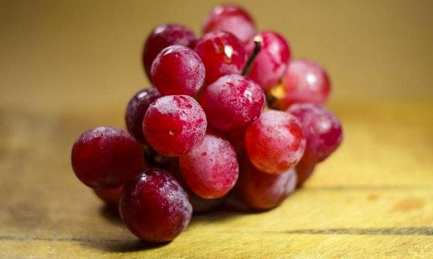 Вещества из винограда помогут в лечении депрессии