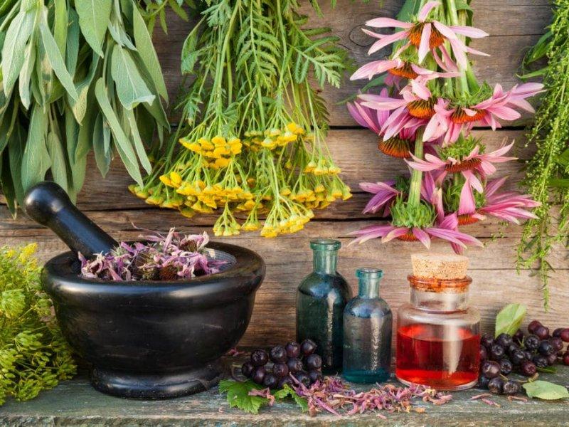 Справиться со стрессом и побороть депрессию помогут травы