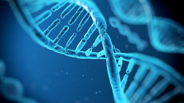 У афроамериканцев обнаружили ген, связанный с депрессией и алкоголизмом