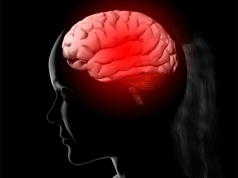 Различия в проводке мозга у детей приводят к агрессивному и антисоциальному поведению