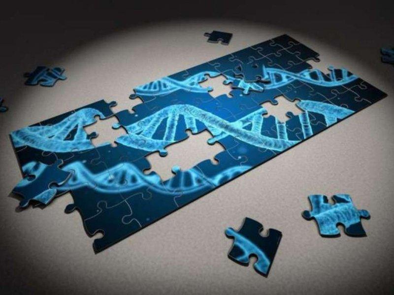 Исследование опрокинуло гипотезу «генов депрессии»