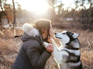 Собаки способны распознавать стресс у своих хозяев