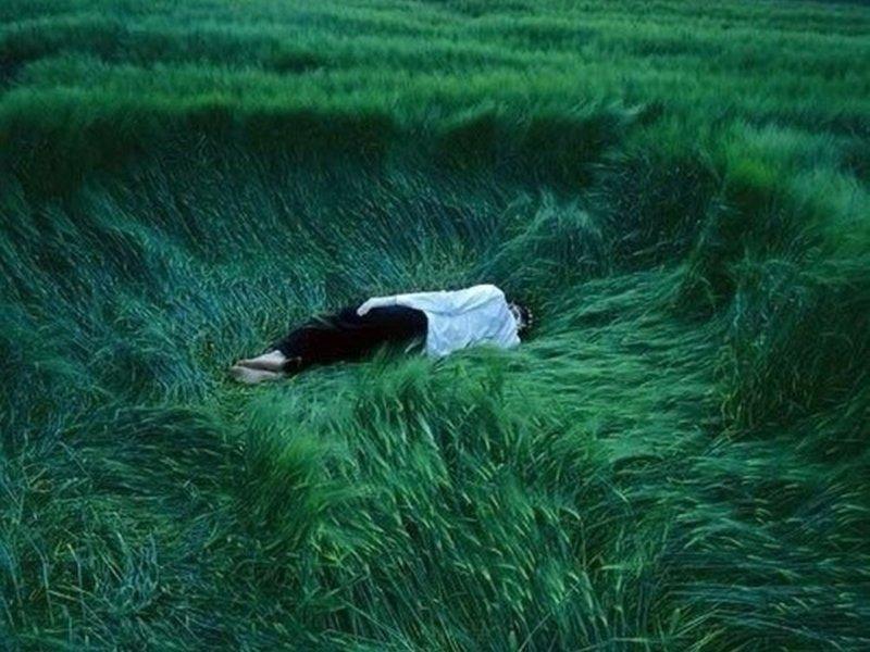 Людей одолевает «зеленая депрессия»