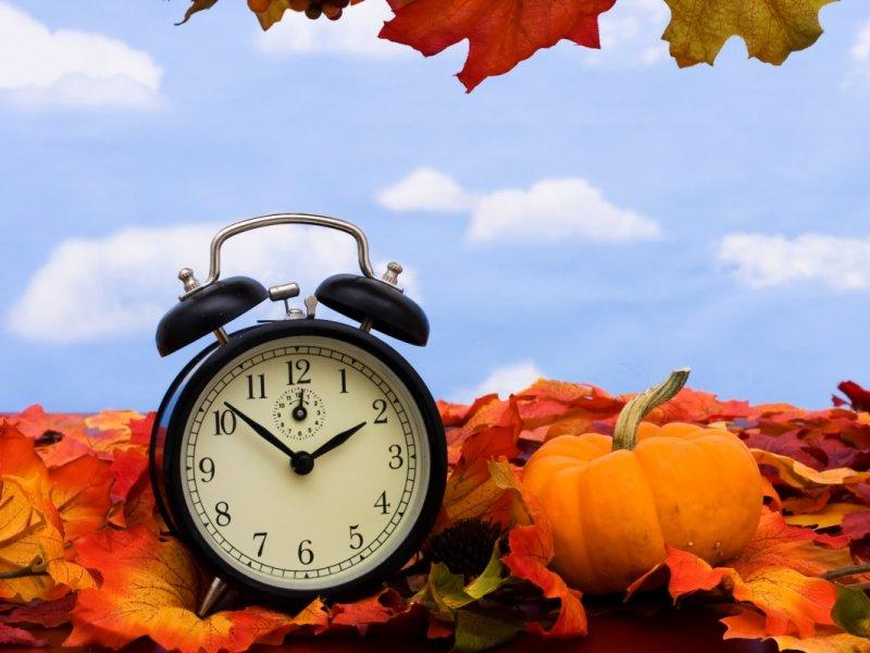 Питание, закаливание и отсутствие стресса: как укрепить здоровье осенью?