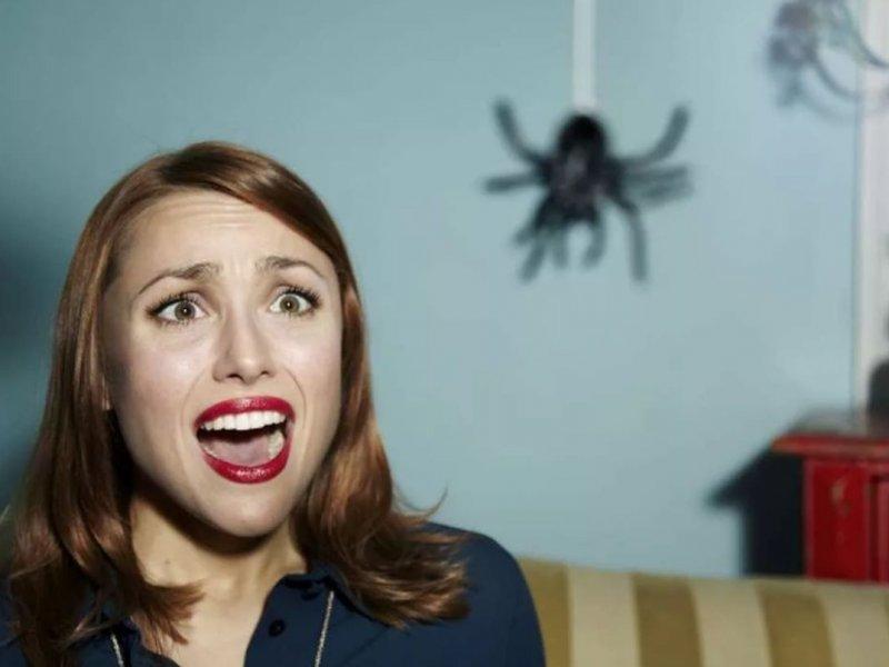 Арахнофобия: почему люди боятся пауков?