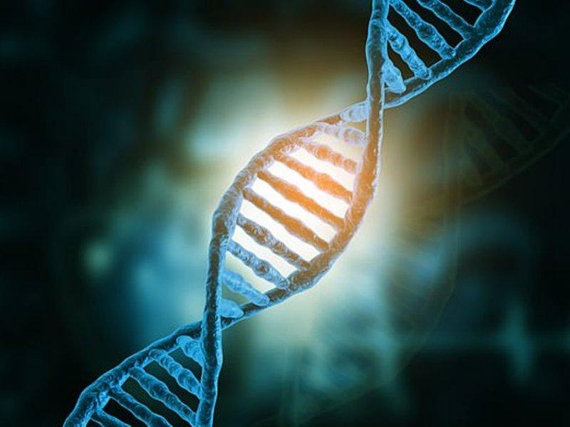 Ученые обнаружили 10 главных генов шизофрении