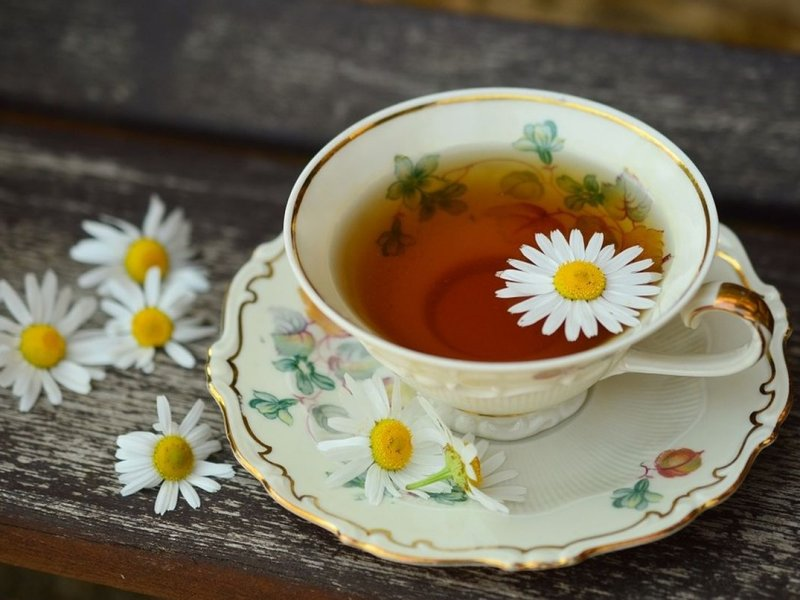 5 всегда доступных растительных средств, которые помогают при нервозности и стрессе