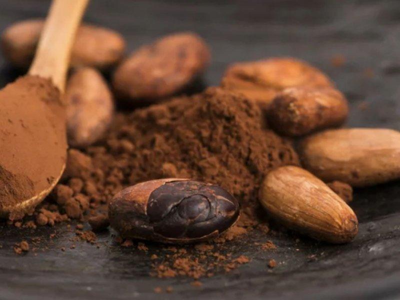 6 плюсов для здоровья от употребления в пищу сырых бобов какао