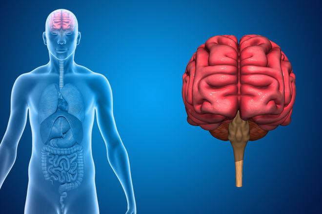 После черепно-мозговой травмы вам следует записаться на йогу, советуют неврологи