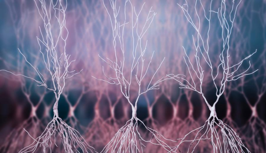 Изучен механизм возникновения болезни Альцгеймера и предложены пути его блокировки