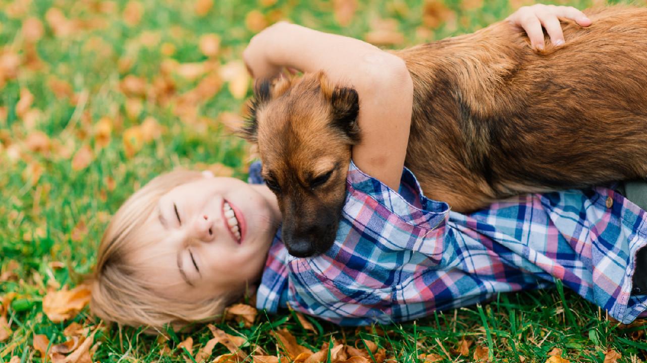 Психиатр Марина Гуркина рассказала о канистерапии с участием своей собаки Сильвы