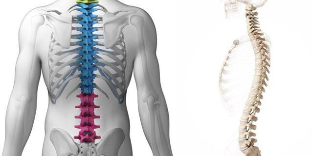 Грыжа межпозвоночного диска: причины, симптомы и правильное лечение